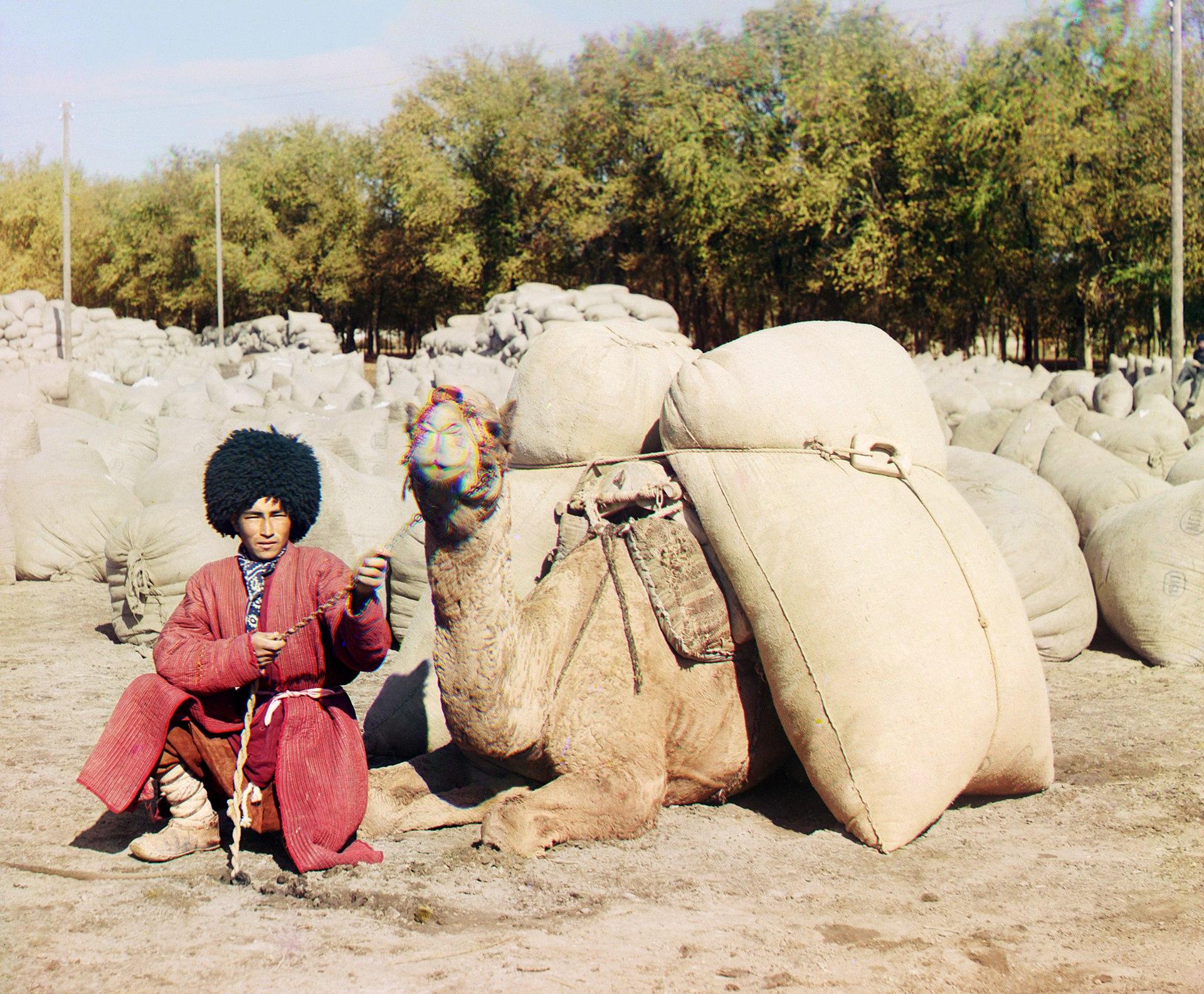 1920px-Turkmen_man_with_camel